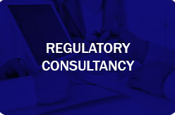 regulatory-consulting1